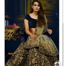 Gorgeous Sequence Lahenga(Product Code-BC8)