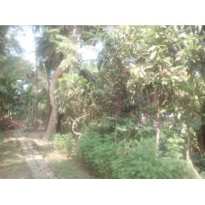 Land At NijKhamar, Zero Point, Khulna (Product Code-IA4), [Baganbari]