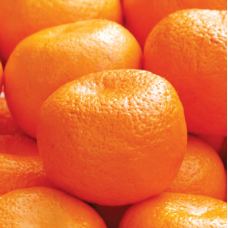 Orange(Product Code-DC4)